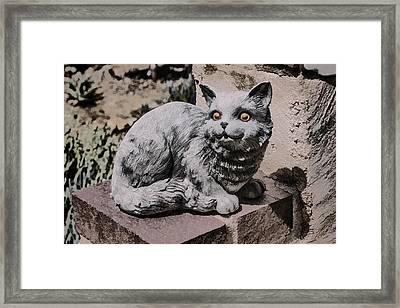 Garden Cat Framed Print
