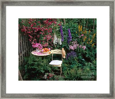 Garden With Chair Framed Print by Hans Reinhard