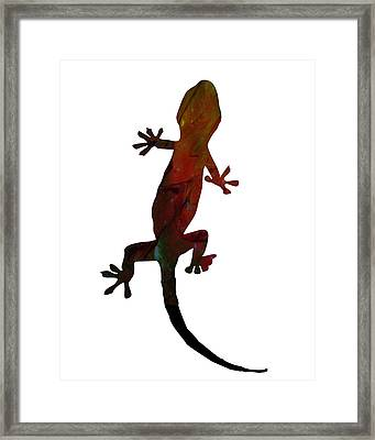 Gecko Framed Print by Celestial Images