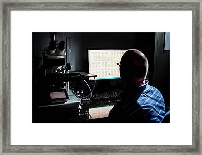 Genetic Metaphase Analysis Framed Print