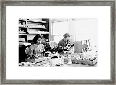 Genetics Research Framed Print