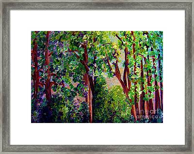 Gentle Breeze  Framed Print by Eloise Schneider