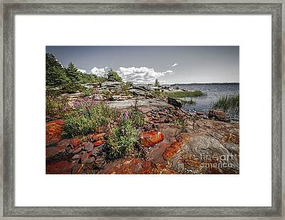 Georgian Bay Iv Framed Print