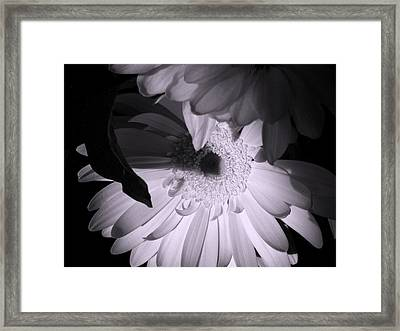 'gerber Poetry' Framed Print