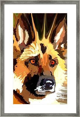 German Shepherd Framed Print by Chris Butler