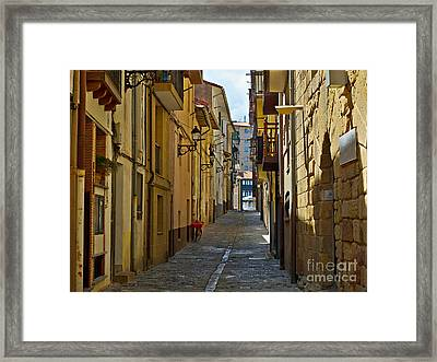 Getaria In Basque Country Spain Framed Print