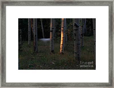Ghostly Apparition Framed Print