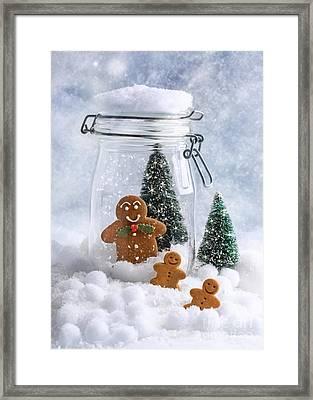 Gingerbread Framed Print by Amanda Elwell