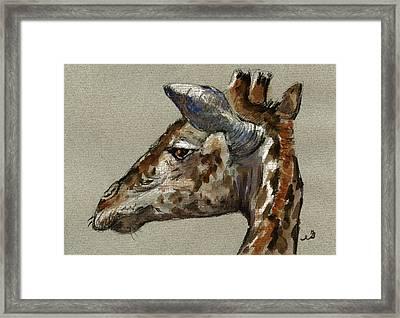 Giraffe Head Study Framed Print by Juan  Bosco