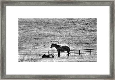 Glacier National Park Montana Usa Framed Print by Paul James Bannerman