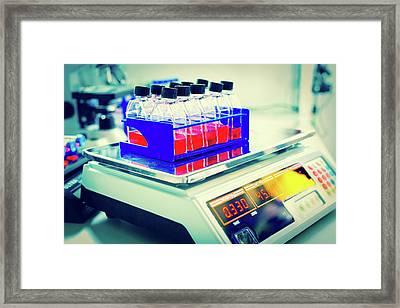 Glass Bottles In Lab Framed Print by Wladimir Bulgar