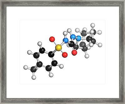 Gliclazide Diabetes Drug Molecule Framed Print by Molekuul