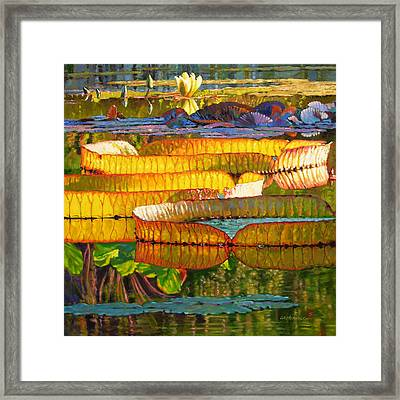 Glorious Morning Lilies Framed Print
