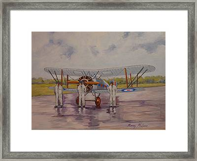 Framed Print featuring the painting Gloster Gamecock by Murray McLeod