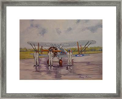 Gloster Gamecock Framed Print