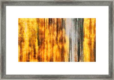 Golden Days Of Autumn Framed Print by Dan Sproul