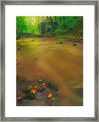 Framed Print featuring the photograph Golden River by Maciej Markiewicz