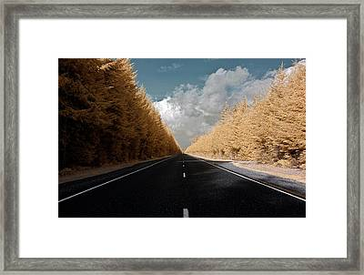 Framed Print featuring the photograph Golden Road by David Stine
