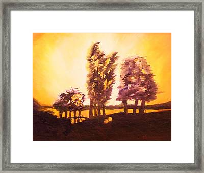Golden Sky Framed Print