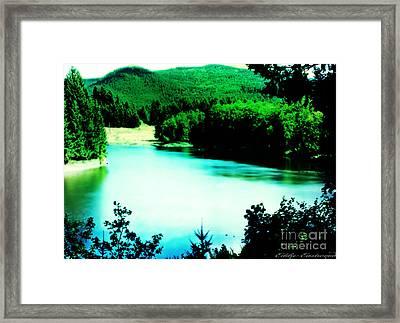 Gorge Waterway Victoria British Columbia Framed Print