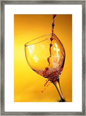 Got Wine Framed Print by Michael Ledray