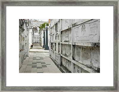Graveyard At La Ciudad Blanca Framed Print