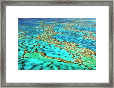 Great Barrier Reef Framed Print by Bildagentur-online/mcphoto-schulz