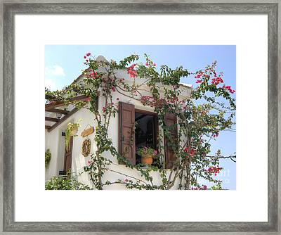 Greek Charm Framed Print by David Birchall