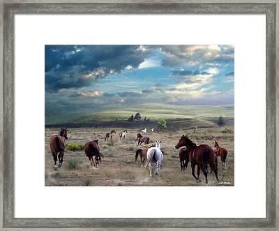 Greener Pastures Framed Print by Bill Stephens