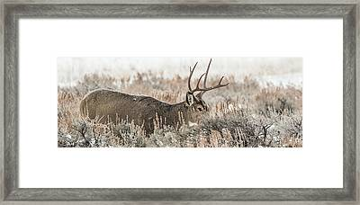 Greeting A Frosty Dawn Framed Print by Yeates Photography