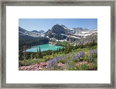 Grinnell Lake Flowers Framed Print