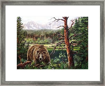 Grizzley Framed Print by W  Scott Fenton