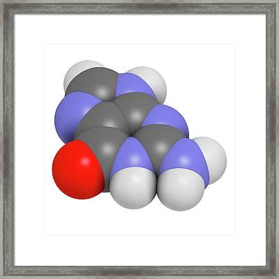 Guanine Purine Nucleobase Molecule Framed Print