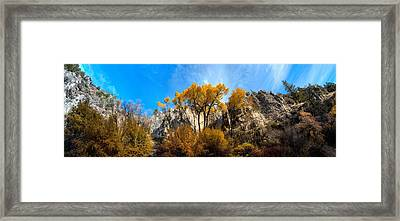 Framed Print featuring the photograph Guardians by David Andersen