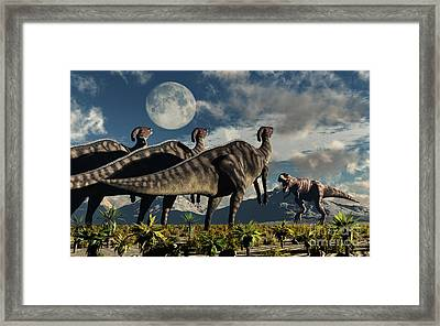Hadrosaurid Duckbill Dinosaurs Use Framed Print by Mark Stevenson