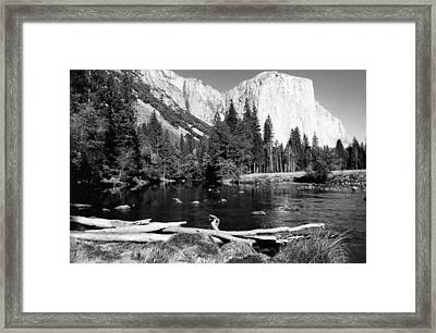 Half Dome In Yosemite In October Framed Print by Barbara Snyder