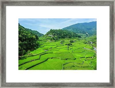 Hapao Rice Terraces, World Heritage Framed Print by Michael Runkel