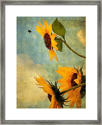 Happy Landing Framed Print by William Schmid