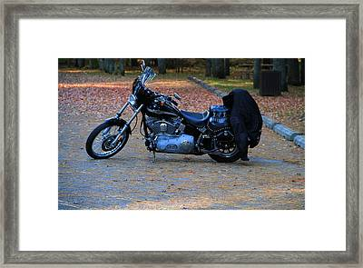Harley Framed Print by Dan Sproul
