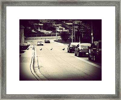 Framed Print featuring the photograph Harmony by Zinvolle Art