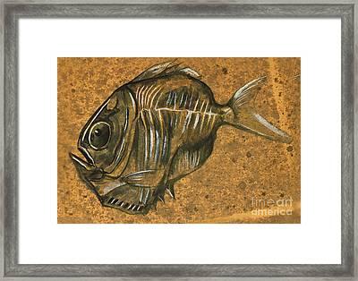 Hatchet Fish Framed Print