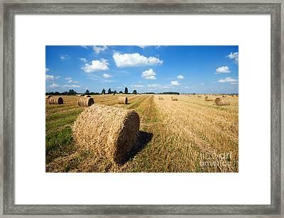 Haystacks In The Field Framed Print by Michal Bednarek