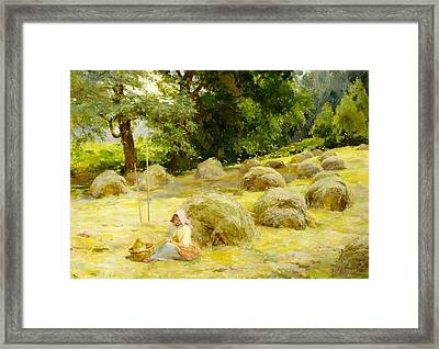 Haytime Framed Print