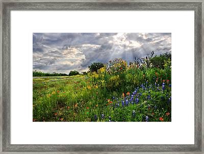 Heaven's Light  Framed Print by Lynn Bauer