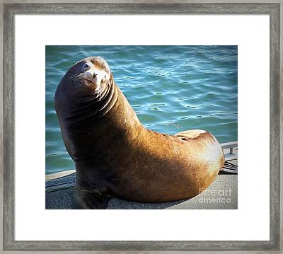 Hello Framed Print by Chalet Roome-Rigdon
