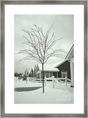 Hello Snow Framed Print by Roberta Byram
