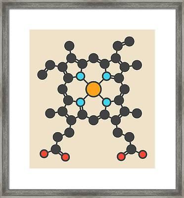 Heme B Molecule Framed Print