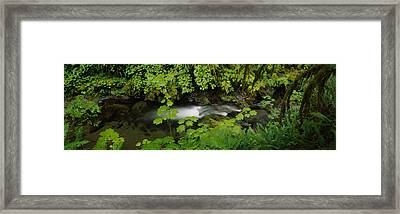 High Angle View Of A Lake Framed Print by Panoramic Images