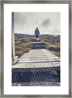 Hiker On The Overland Track In Cradle Mountain Framed Print