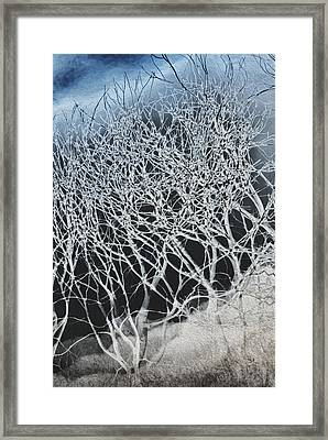 Hillside Framed Print by Jack Zulli
